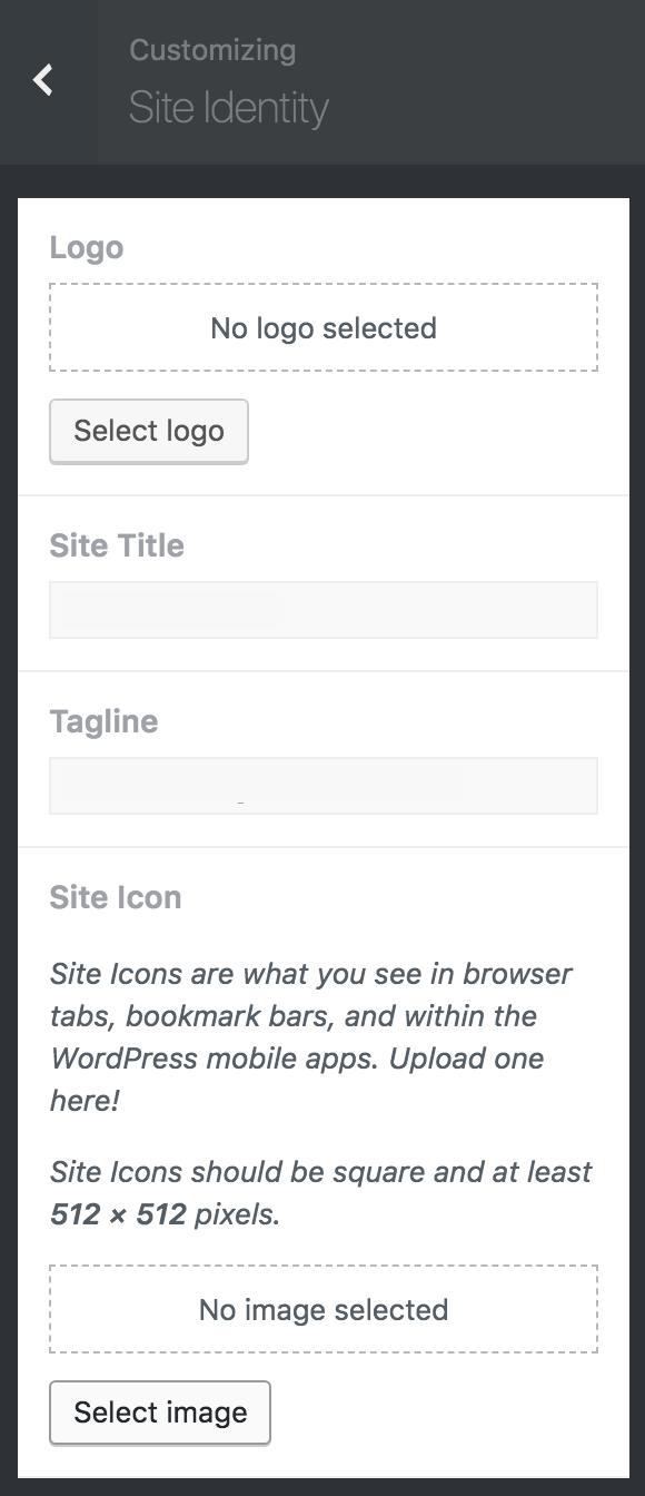 8bit Theme customizer Site Identity options